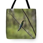 Bird Of Color Tote Bag