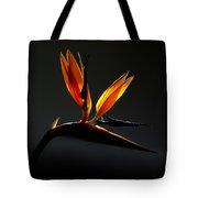 Bird Of Paradise 3 Tote Bag