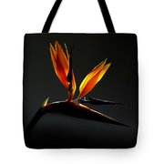 Bird Of Paradise 3 Tote Bag