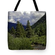 Bird Over Vail 1 Tote Bag