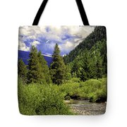 Bird Over Vail 2 Tote Bag