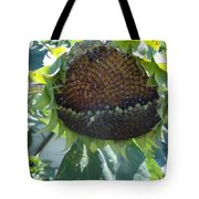 Bird Seed Tote Bag