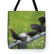 Bird Trio Tote Bag