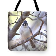 Bird - Tufted Titmouse - Busted Tote Bag