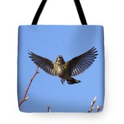 Bird Vs Bug Tote Bag