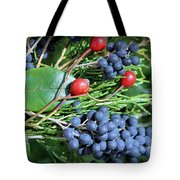 Birdies Bounty Tote Bag by Kristin Elmquist