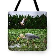 Birding Action At Circle B Bar Reserve Tote Bag