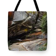 Birdrock Waterfall Tote Bag