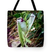 Birds And Bees And Luna Moths Tote Bag