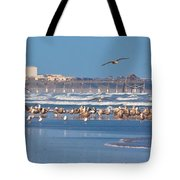 Birds Only Beach Tote Bag