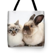 Birman Cat And Colorpoint Rabbit Tote Bag