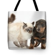 Birman Cat And Dachshund Puppy Tote Bag