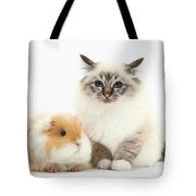 Birman Cat And Frizzy Guinea Pig Tote Bag