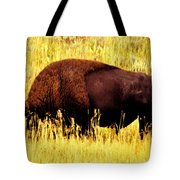 Bison In Field Tote Bag