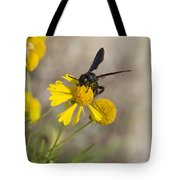 Bitterweed And Black Wasp Tote Bag