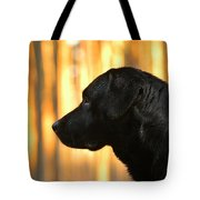 Black And Gold Tote Bag