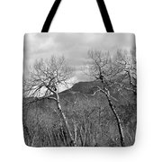 Black And White Aspen Tote Bag