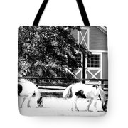 Black And White Clydesdale Grazing Tote Bag