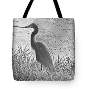 Black And White Egret  Tote Bag