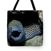 Black And White Honeycomb Moray Eel Tote Bag