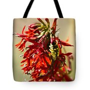 Black And Yellow Garden Spider 1 Tote Bag