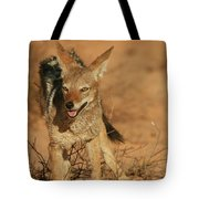 Black-backed Jackal Tote Bag