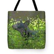 Black Bear In Green Tote Bag