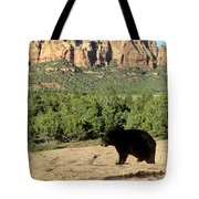 Black Bear In Utah Tote Bag