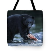 Black Bear With Salmon Carcass Tote Bag