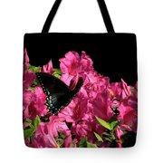 Black Beauty In Flight Tote Bag