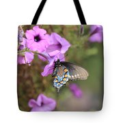 Black Blue And Orange Butterfly V3  Tote Bag