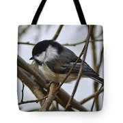 Black Capped Chick Tote Bag