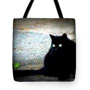 Black Cat Beauty Tote Bag