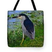 Black Crowned Night Heron II Tote Bag