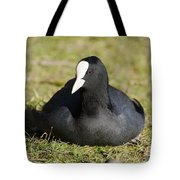 Black Duck Tote Bag