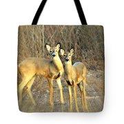 Black Ear Deer Tote Bag