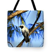 Black Faced Cuckoo Shrike V3 Tote Bag