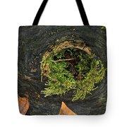 Black Hole Life Tote Bag