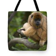 Black Howler Monkey Alouatta Caraya Tote Bag