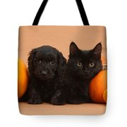 Black Kitten & Puppy With Pumpkins Tote Bag