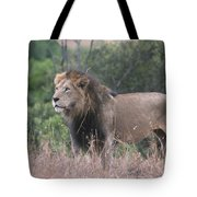 Black Maned  Lion Tote Bag