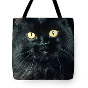 Black Persian Cat Tote Bag