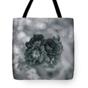 Black Rose With Bokeh Tote Bag
