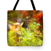 Black Swallow Tail Butterfly In Autumn Colors Tote Bag