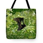 Black Swallowtails Mating Tote Bag