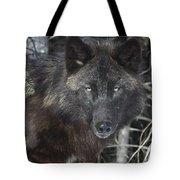 Black Timber Wolf Tote Bag