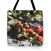Blackberry On The Rock 02 Tote Bag