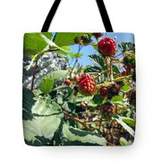Blackberry On The Rock 03 Tote Bag