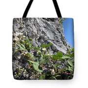 Blackberry On The Rock 04 Tote Bag
