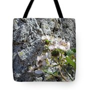 Blackberry On The Rock Square Format Tote Bag
